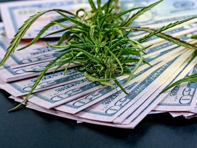 The Economics of Legalization