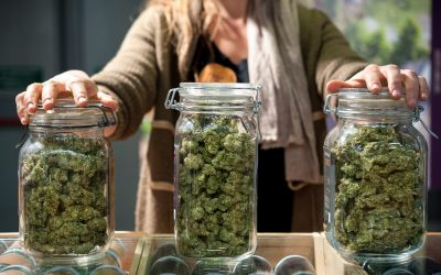 The Business of Marijuana